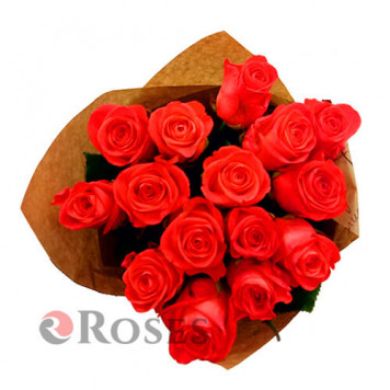 Wow 15 roses